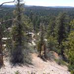 CAmpground seen from the Rim trail