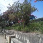 Foto de Jardín Botánico de Córdoba