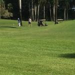 Campo golf