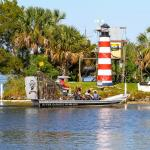 Airboat rides and Dolphin Tours since 1990