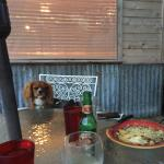Dogs are welcome on the deck. :)