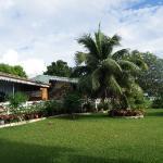 Magnifique jardin entretenu avec amour par Myrtille