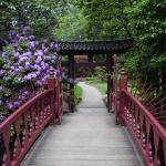 Foto de Japanischer Garten