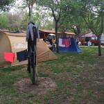 Photo de Camping El Palmar