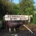 Photo de Otorohanga Kiwi House & Native Bird Park