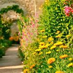 Jardins du Chateau de Canon
