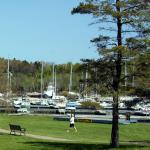 This a view of the marina from Motel back door.