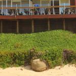 Esplanada do Grão D'Areia (vista da praia)