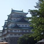 名古屋城で毎日観られる