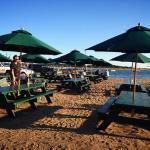 Mac's picnic tables at Mayo Beach