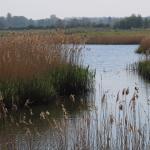 North Cave Wetlands Nature Reserve