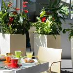 Hotel Ibis Styles Catania Acireale