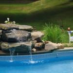 Peaceful waterfall feature at the pool