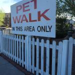 Pet Walk area