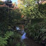 Foto de Hamilton Gardens