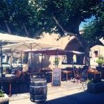 La Terrasse du Mimosa
