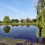 L'étang au fond du parc