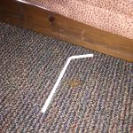 Straw and Dead Centipede by Bed