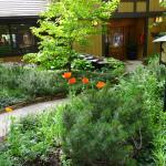Harmony Ridge Lodge Foto
