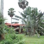 A beautiful villa and garden around the hotel