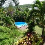 Villa Cajou jardin piscine
