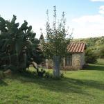 Agriturismo Piandartino Foto