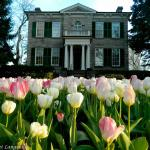 Whitehern Historic House and Garden