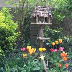 Foto de Het Vogelhuis