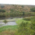 Foto de Bontebok National Park