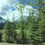 Foto de HI-Beauty Creek Wilderness Hostel