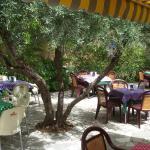 La terraza de Los Prados de Quentar con sus olivos y sus macetas, un autentico patio andaluz