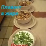 Satsivi Foto