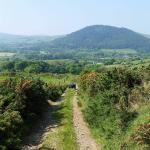 Ballacraine Quad Bike Trail Rides