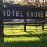 Hotel Krone Foto