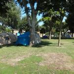 Foto di Camping San Nicolo