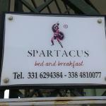 B&B Spartacus Image