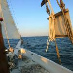 Sailing Out on the Skipjack Wilma Lee