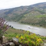 Photo de Quinta de Santo Antonio