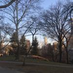 Central Park Foto