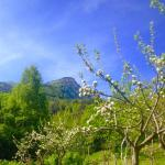 Bella Baita has a vegetable garden, and fruit trees on a mountain. The combination is spectacula