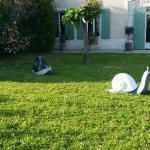 Photo of Les Grands Vents