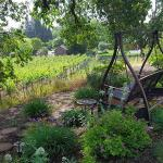 Foto de The Wine Country Inn