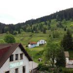 Alentours de l'hotel sur la route des étangs de Lispach.. Hotel à 5km de La Bresse