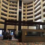 Hilton Phoenix/ Mesa Foto