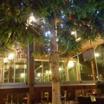 Turkuaz Cafe & Restaurant