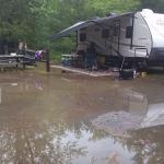 Yogi Bear's Jellystone Park Camp-Resort at Paradise Pines Foto