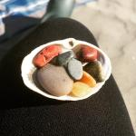 My little collection from this cute beach.