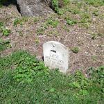 Ashland: The Henry Clay Estate Foto