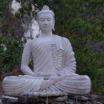 Another Thoughtful Reflecting Buddha