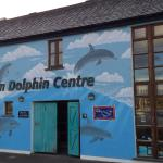Shannon Dolphin and Wildlife Centre